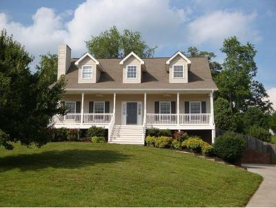 Gray Single Family Home For Sale: 679 Walkers Bend Road