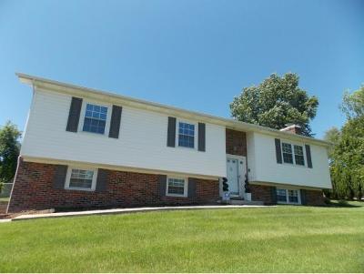 Bristol Single Family Home For Sale: 113 Dover Lane