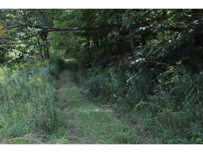 Butler Residential Lots & Land For Sale: S Of Little Dry Run
