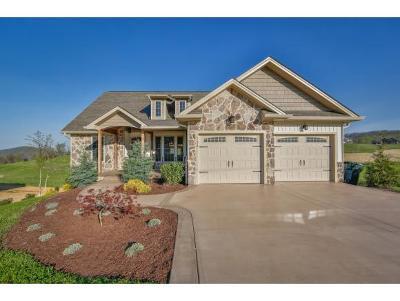 Johnson City Single Family Home For Sale: 733 Hales Chapel Road