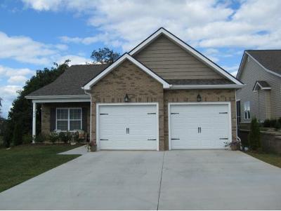 Johnson City Single Family Home For Sale: 609 Trillium Trail