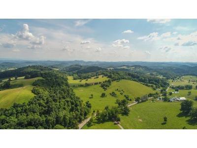 Blountville Residential Lots & Land For Sale: TBD Dunlap Road