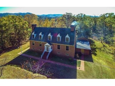 Greeneville Single Family Home For Sale: 655 Crum Cir