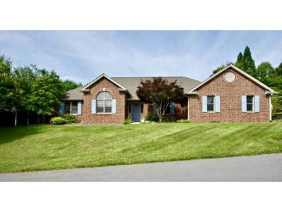 Kingsport Single Family Home For Sale: 1009 Laurelwood Dr