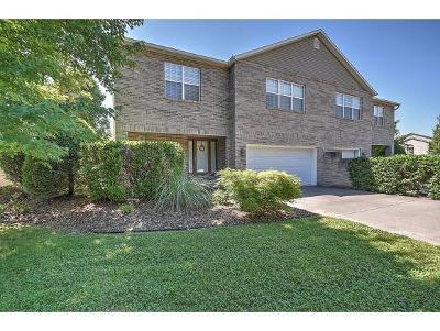 Johnson City Single Family Home For Sale: 131 Westin Parc #15