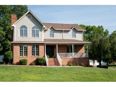 Johnson City Single Family Home For Sale: 3002 Moss Creek Drive