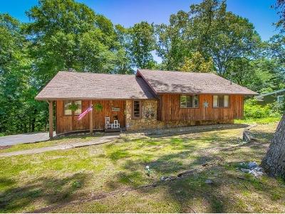 Johnson City Single Family Home For Sale: 910 Echo Lane