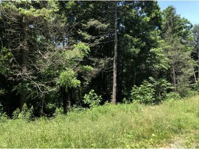 Johnson City Residential Lots & Land For Sale: TBD Dry Creek Rd