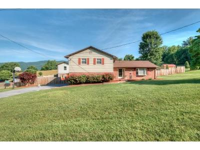 Johnson City Single Family Home For Sale: 1306 Amber Dr