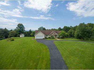 Jonesborough Single Family Home For Sale: 2 Blue Mountain Court