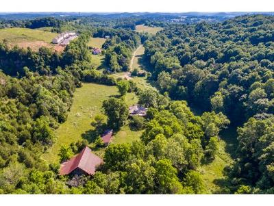 Johnson City Residential Lots & Land For Sale: 1360 Old Gray Station Road