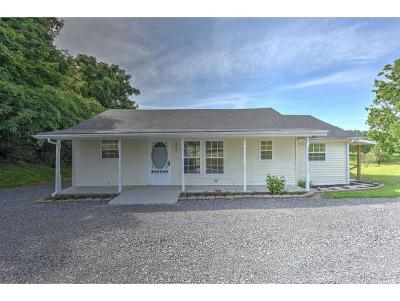 Rogersville Single Family Home For Sale: 1002 Old Stage Rd