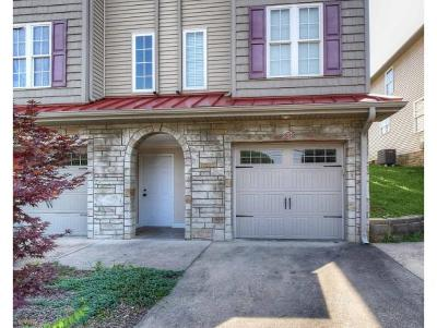 Bluff City Condo/Townhouse For Sale: 32 Earhart Road #32