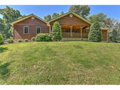 Johnson City Single Family Home For Sale: 170 Joy Drive