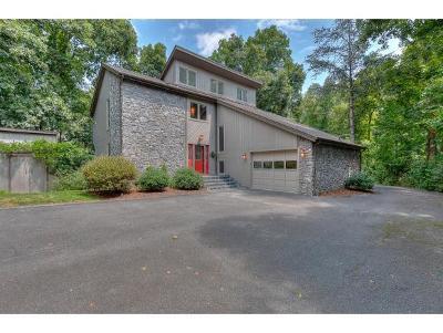 Bristol VA Single Family Home For Sale: $259,900