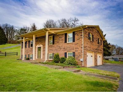 Blountville Single Family Home For Sale: 240 Kingston Road