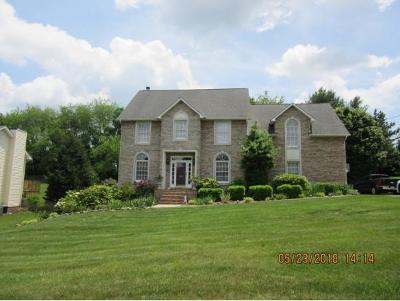 Kingsport Single Family Home For Sale: 383 Chesterfield