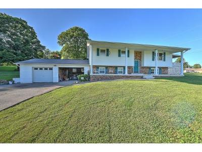 Church Hill Single Family Home For Sale: 110 Ashwood Ct