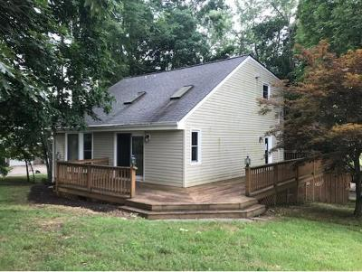 Johnson City Single Family Home For Sale: 210 Joe Hale Dr