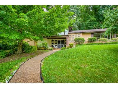 Johnson City Single Family Home For Sale: 307 Marshall Court