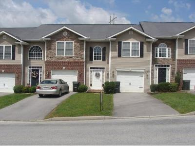 Bristol VA Condo/Townhouse For Sale: $127,900