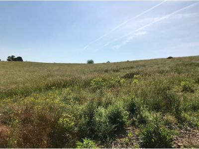 Bristol Residential Lots & Land For Sale: TBD Henson Road