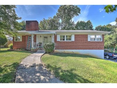 Bristol Single Family Home For Sale: 229 Woodbine Rd