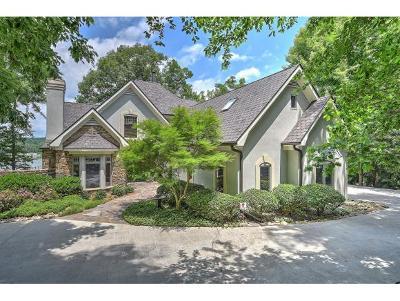 Johnson City TN Single Family Home For Sale: $800,000