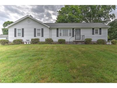 Johnson City Single Family Home For Sale: 4108 Timberlake Rd