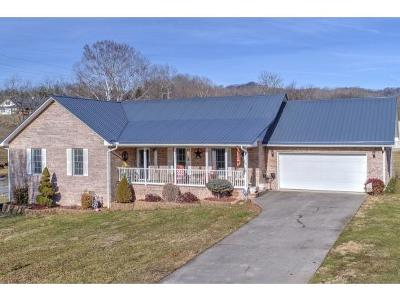 Rogersville Single Family Home For Sale: 300 Stewart Hills Drive