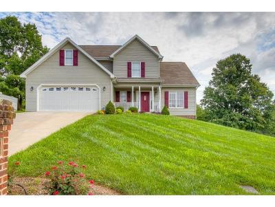 Blountville Single Family Home For Sale: 268 Southridge