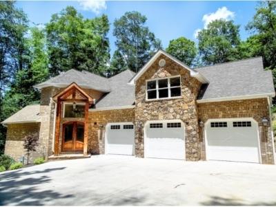 Johnson City TN Single Family Home For Sale: $729,000