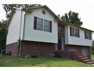 Rogersville Single Family Home For Sale: 181 Madeline Lane