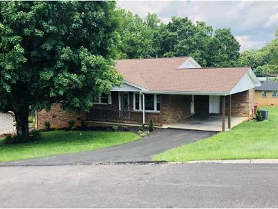 Johnson City Single Family Home For Sale: 1902 Birdie Drive