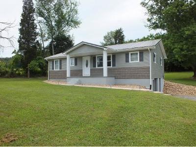 Rogersville Single Family Home For Sale: 410 Holston Terrace