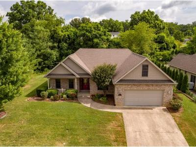 Johnson City Single Family Home For Sale: 223 Alta Tree Blvd.