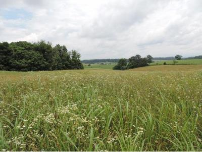 Greene County Residential Lots & Land For Sale: Paul Baskette Rd