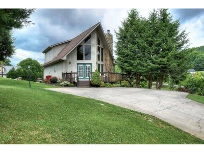 Johnson City Single Family Home For Sale: 321 Crouch Rd