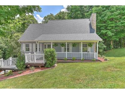 Rogersville Single Family Home For Sale: 131 Regency Drive