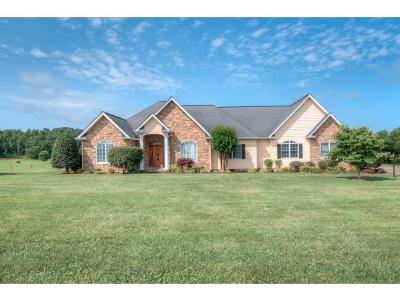 Bristol TN Single Family Home For Sale: $379,985