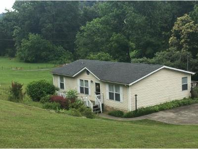 Blountville Single Family Home For Sale: 5910 Highway 126
