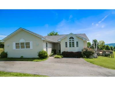 Abingdon Single Family Home For Sale: 24238 Eagle Site Drive