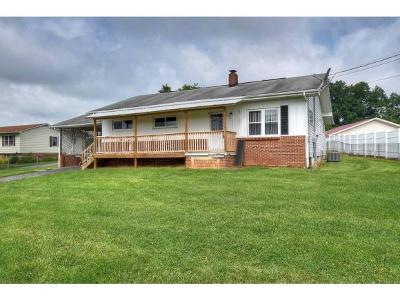 Piney Flats Single Family Home For Sale: 874 Muddy Creek
