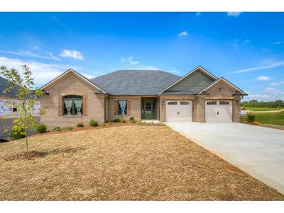 Piney Flats Single Family Home For Sale: 3276 Allison Meadows Boulevard