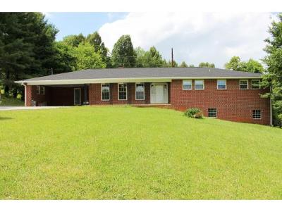 Jonesborough Single Family Home For Sale: 118 Town And Country Drive