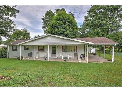 Bristol TN Single Family Home For Sale: $79,900