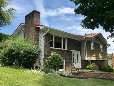 Bristol Single Family Home For Sale: 288 Bellehaven Drive
