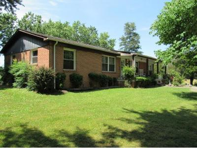 Greeneville TN Single Family Home For Sale: $89,900