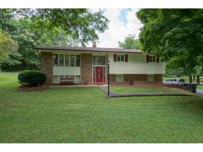 Kingsport TN Single Family Home For Sale: $169,900