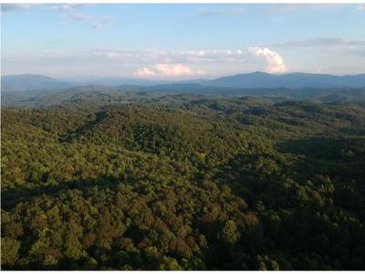 Hampton Residential Lots & Land For Sale: TBD Dennis Cove/Walnut Mountain Rd